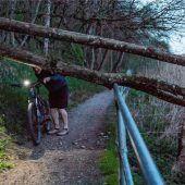 Umgefallener Baum lag quer über dem Innuferweg