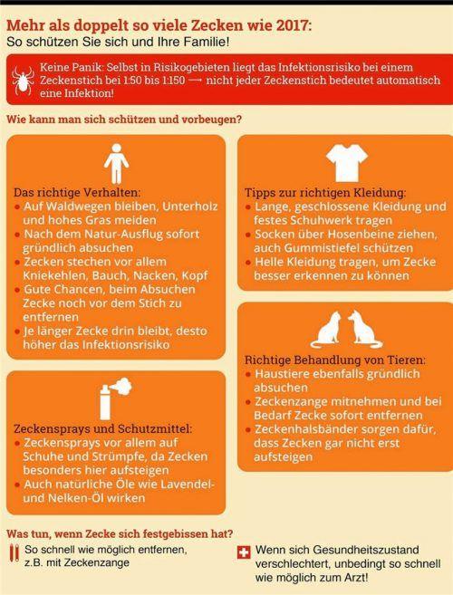 Diese Grafik zeigt Maßnahmen zum Schutz vor Zeckenbissen. haushaltstipps.net