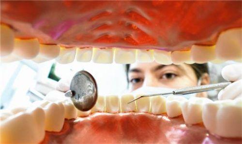 Abwechslungsreich: der Beruf des/r Zahnmedizinischen Fachangestellten. Foto dpa