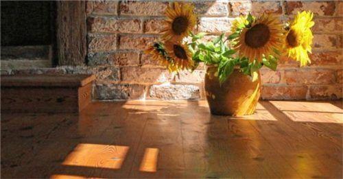 Mit Naturölen behandelte Holzböden entwickeln eine besondere Brillanz. Foto Naturoel-Holzboden