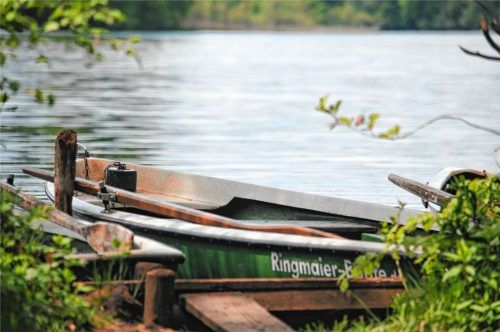 Der Bootsanleger in der Rimstinger Bucht am Langbürgner See: Hier haben zwei Angler die toten Küken gefunden.