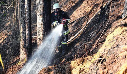 In Fränking bei Niedertaufkirchen war ein Aschehaufen in einem Waldstück abgelagert worden. Der Wind hatte das Feuer im Aschehaufen offensichtlich neu entfacht. Das Feuer fand im Wiedhaufen daneben Nahrung.Fotos Eß/fib