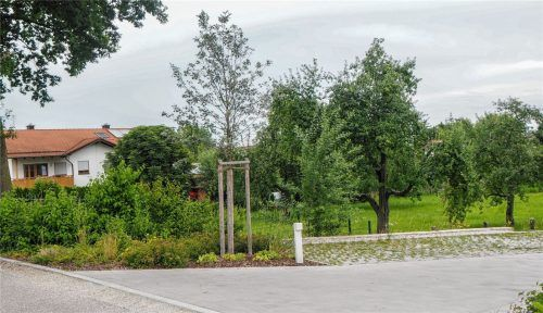 """Auf dieser Wiese an der Marienberger Straße sollen die """"Ludwigsgärten"""" entstehen. Foto Archv Heinz"""