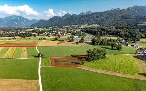 Auf der links gekennzeichneten Fläche ist der Gemeinderat mehrheitlich mit einer Großanlage einverstanden. Foto Berger