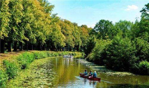 Auf der Vechte können sich Kanuten fast wie im Urwald fühlen.