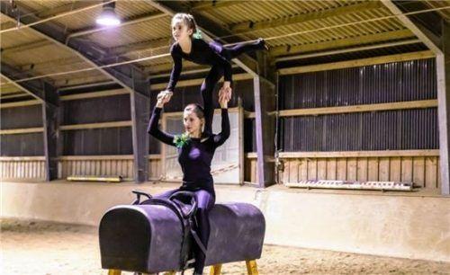 Der Voltigierverein führt unter anderem Übungen auf dem Holzpferd auf. Foto Sinnesbichler