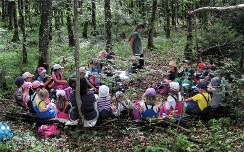 """Die """"Mäusegruppe"""" aus Rott unternahm schon mal einen Waldausflug ins künftige """"Wawiba-Land"""", wo ein Waldkindergarten entstehen soll. Foto Hiermeier"""