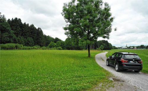 Ein Streuobststreifen entsteht links dieses Feldweges an der Baierbacher Straße. Am rechten Bildrand ist das Sportgelände in Waldering zu erkennen. Foto Schlecker