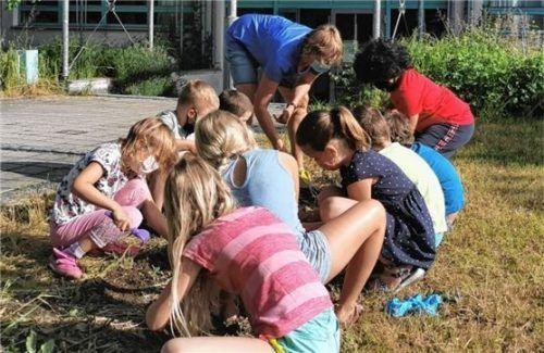Lehrkraft Andrea Lenz mit den Kindern der 1a beim Pflanzen des Saatgutes. Foto Stettner