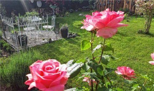 Ruhe und Entspannung bieten zwischen Blumen und Pflanzen kleine Gartennischen.