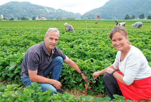 Seit 20 Jahren Fans der Erdbeere: Konrad und Vroni Niederthanner. Foto Reisner