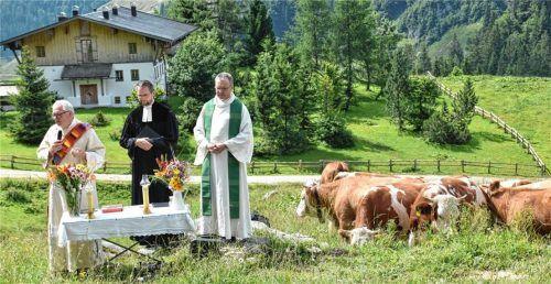 Auch die Kühe lauschten scheinbar der Predigt von (von links) Diakon Heiner Vogel, Pfarrer Dietrich Klein und Pfarrer Paul Janßen.Foto wunderlich