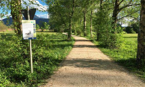 Das neue Schild am Uferweg auf Höhe des Schöllkopfes weist auf die brütenden Bekassine und Schwarzkehlchen hin, Hunde sollen angeleint sein.Foto Alfermann