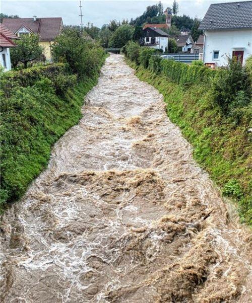 Nach den langen Regenfällen schwoll der Wanklbach am Montagvormittag an. Mit den Hochwasserereignissen, die das Wasserwirtschaftsamt derzeit untersucht, hat das aber noch nicht viel zu tun.Foto  Klemm
