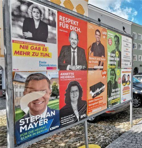 Der Bürger hat die Qual der Wahl: Er kann zwei Kreuze bei der Bundestagswahl machen. Foto Enzinger