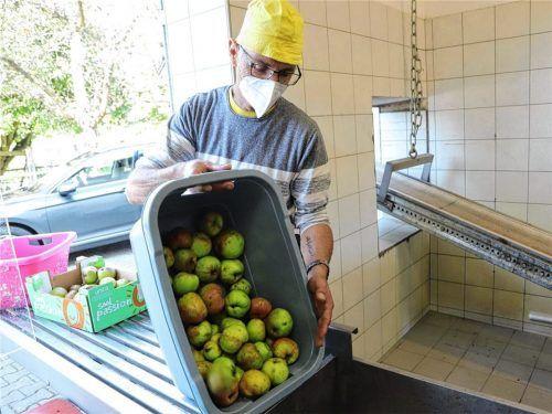 Die Attler Obstpresse, an der Beschäftigter Wolfgang Langhans die Äpfelkörbe ausleert, ist in diesem Jahr nicht ausgelastet. Schuld daran ist die schlechte Obsternte. Foto re