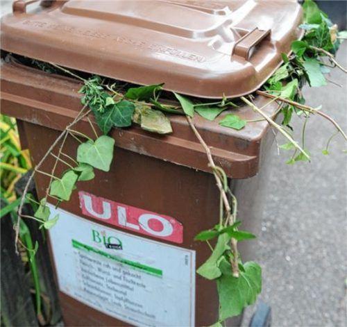 Grünabfälle werden in der Stadt von Anfang Oktober bis Ende November abgeholt. Foto dpa