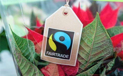 Im Corona-Jahr 2020 gaben Verbraucher in Deutschland 1,9 Milliarden Euro für Fairtrade-Produkte aus. Genaue Zahlen für die Stadt Rosenheim gibt es nicht. Foto dpa