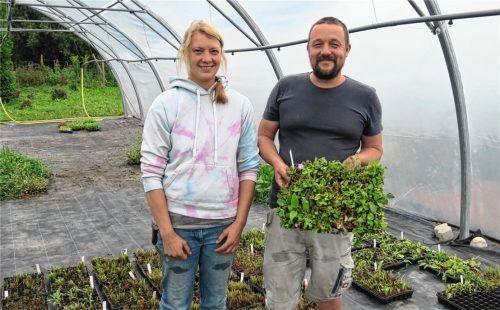 Setzlinge des gebietseigenen Saatgutes ziehen Elisabeth Born und Michael Kefer. Fotos  Baumann
